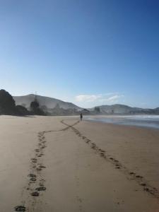 Wainui-Beach-photo-by-Dave-Beard