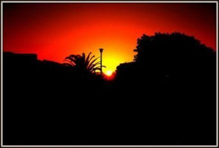 good-morning-sunshine111